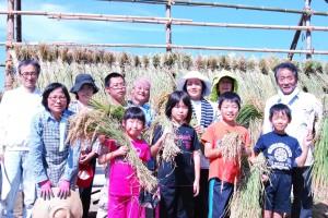 稲刈り作業体験 2